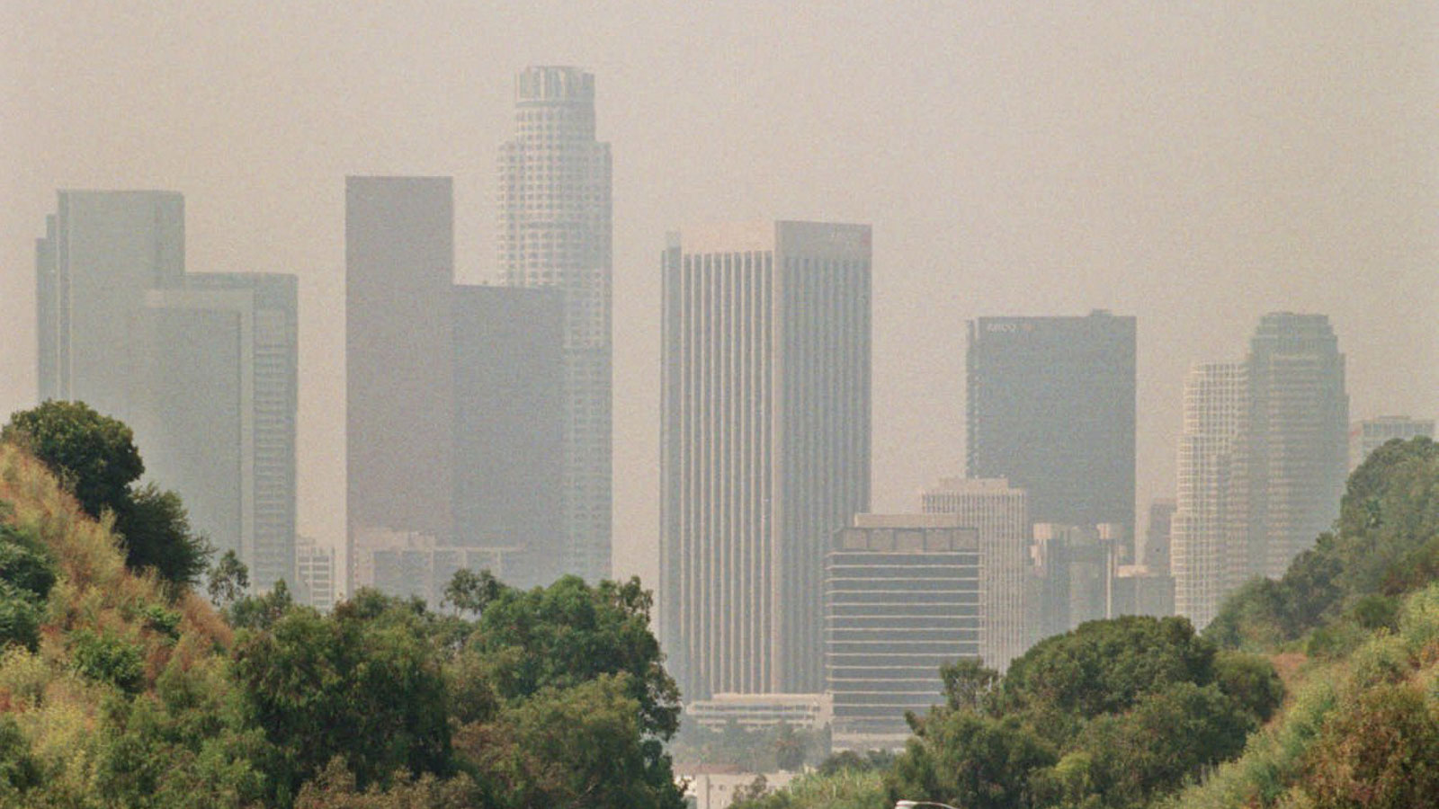 Covid 19 Death Rate Rises In Counties With High Air Pollution Study Says